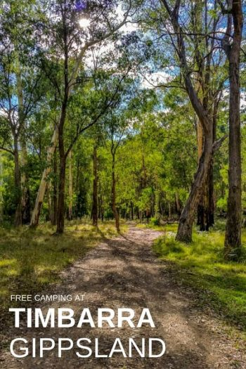 Timbarra free camping - Travels in Gippsland