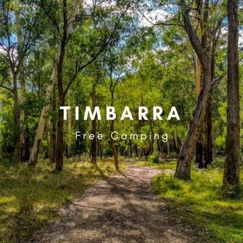 camping ground at Timbarra