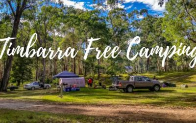 Timbarra free camping