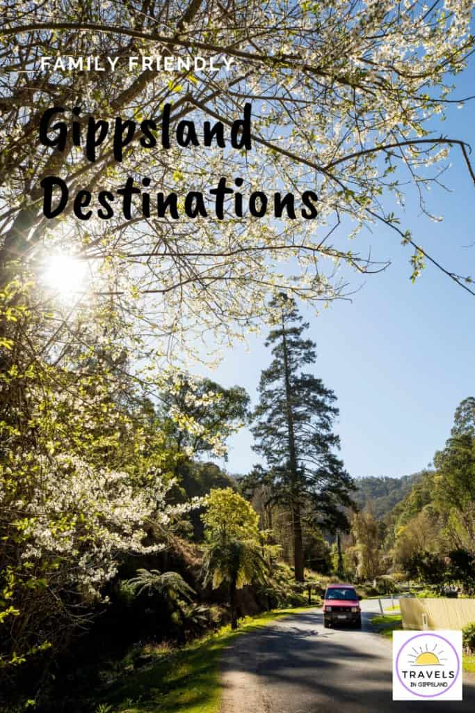 Family friendly Gippsland Australian destinations. Places to visit in Gippsland with kids. | Gippsland | Gippsland Australia | Gippsland attractions | Things to do in Gippsland | Visit Gippsland | Phillip Island | Lakes Entrance | Wilsons Promontory | Walhalla | Dinner Plain | #Gippsland #familytravel #travel #Australia