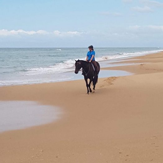 A young girl horse riding in Gippsland on a beach. The brown horse is looking out towards the ocean and the rider is too. It is nice and calm on the beach