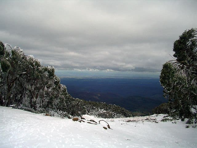 Mount Baw Bar skiing with kids in Gippsland