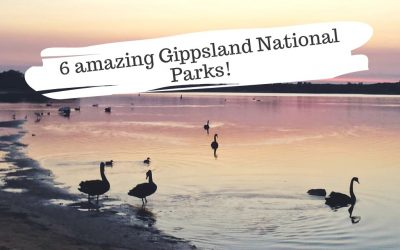 6 Amazing Gippsland National Parks to visit!