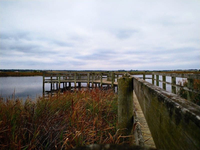 fishing jetty on the Merrimans Creek at Seaspray in Gippsland Australia