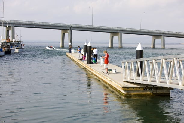 people standing on a jetty fishing and looking at fish