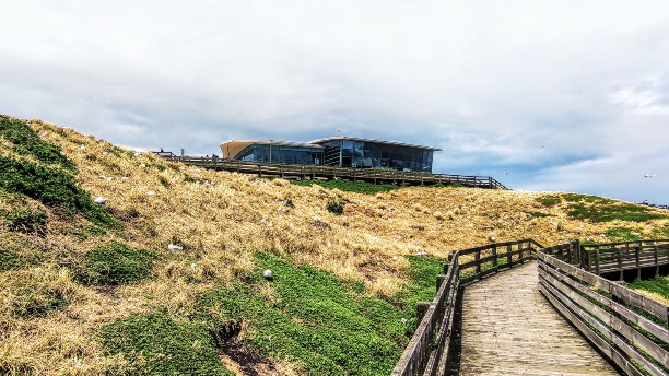 The Artic Discovery Centre sitting on a hill at the Nobbies in Phillip Island