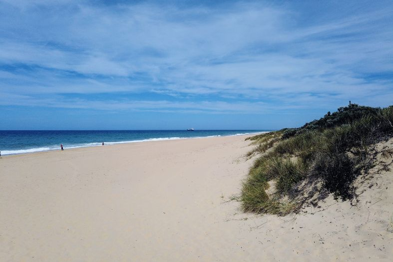 white sand beach with dunes and ocean in Lakes Entrance